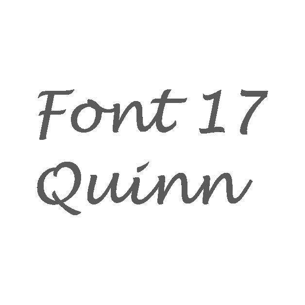 17. Quinn