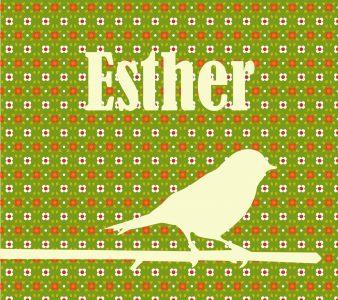 Esther_Voor